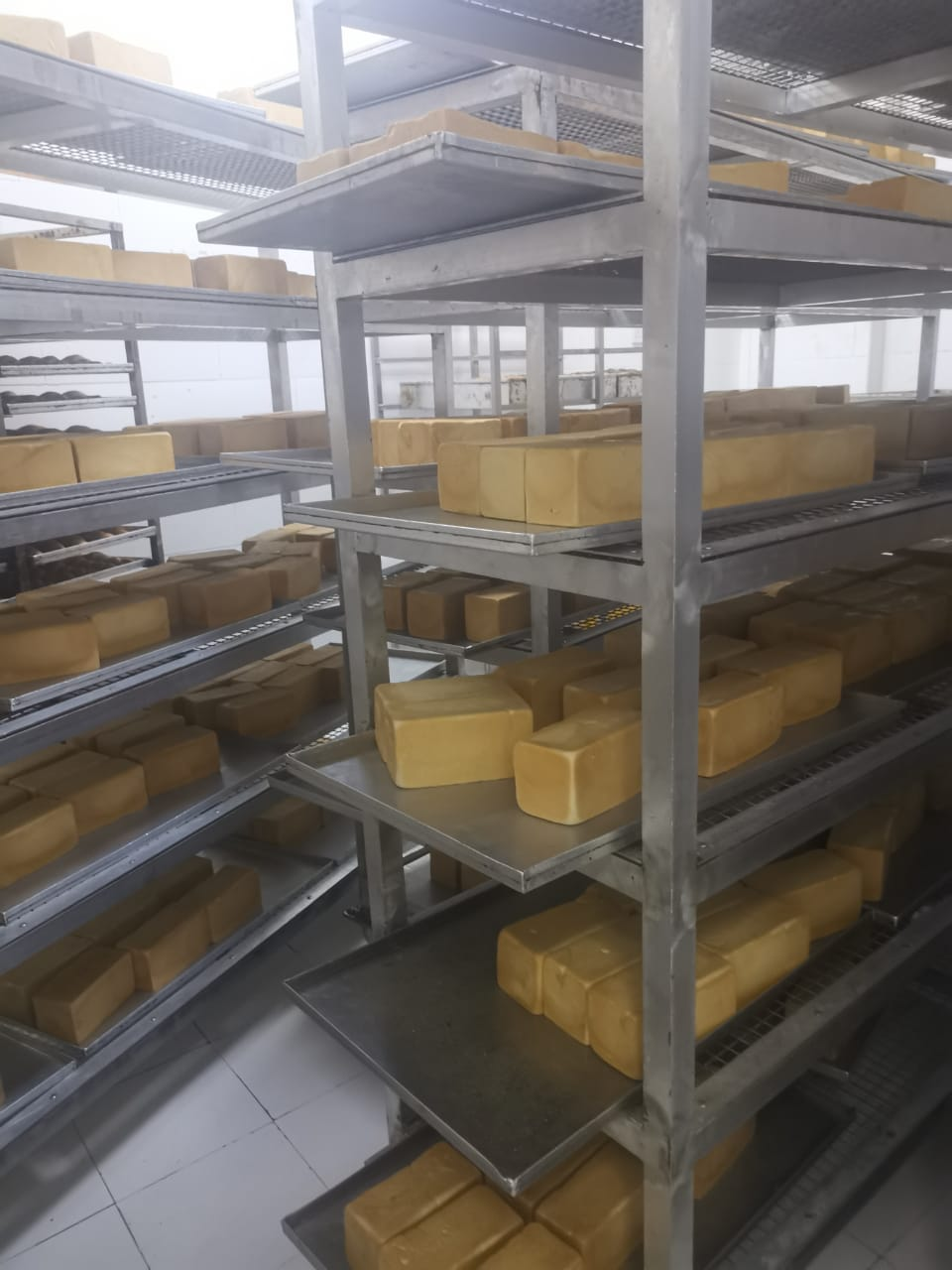 Huge_Bakery_Production_and_Distribution_Company_for_Sale_729