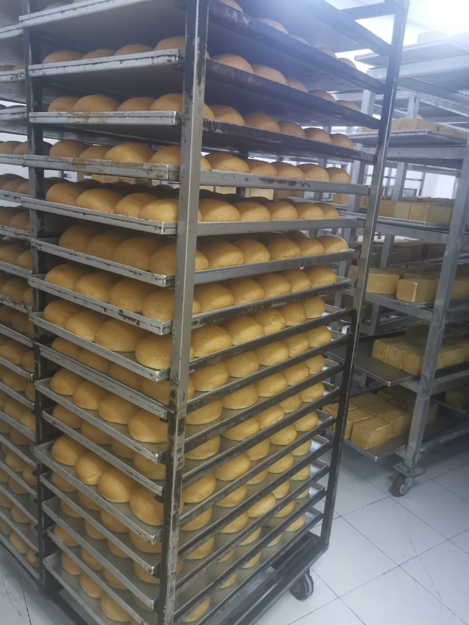 Huge_Bakery_Production_and_Distribution_Company_for_Sale_763