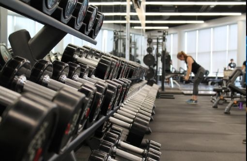 Leading Fitness Equipment Trading Company for Sale